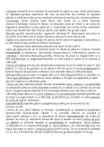 Imagine document Tehnica comercializarii marfurilor