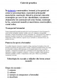 Imagine document Caiet de practica - Betoane