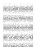 Imagine document Morometii