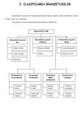 Imagine document Branzeturi