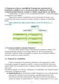 Imagine document Practica in contabilitate