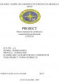 Imagine document Fundatii directe