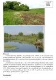 Imagine document Rezervatia ornitologica - Mlastinile Satchinez