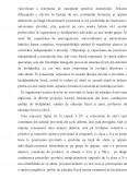 Imagine document Experiment privind dezvoltarea rezistentei cu ajutorul jocului bilateral de handbal