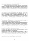 Imagine document Microorganisme utilizate in industria alimentara