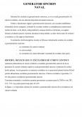 Imagine document Generatoare sincron navale