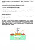 Imagine document Proteinele si Aminoacizii