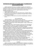 Imagine document Anatomia Si Fiziologia Plamanilor