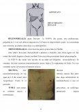 Studiu de caz privind ingrijirea bolnavului cu mononucleoza infectioasa