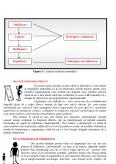Intimidarea - Mecanisme de control ale conducerii de nivel mediu