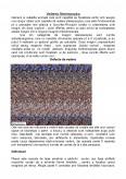Imagine document Defecte de vedere