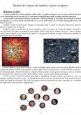 Bazele Ciberneticii - Modele de Crestere ale Retelelor Sociale Complexe