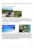 Potentialul Turistic si Valorificarea lui in Statul Florida - Statul Scaldat in Soare