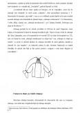 Camasa Femeiasca Traditionala Lapuseana