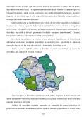 Impactul Regionalizarii asupra Deciziilor in Administratia Publica din Romania, Comparativ cu Celelalte State Membre ale Uniunii Europene