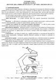 Imagine document Studiul Marfurilor
