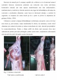 Imagine document Pericole Chimice din Produsele Alimentare de Origine Animala - Substantele Tireostatice