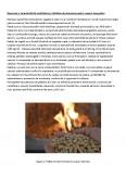APIC - Modificarea centralei alimentata pe lemne intr-o centrala alimentata pe peleti